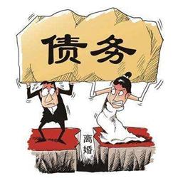 离婚,个人债务性质及举证责任